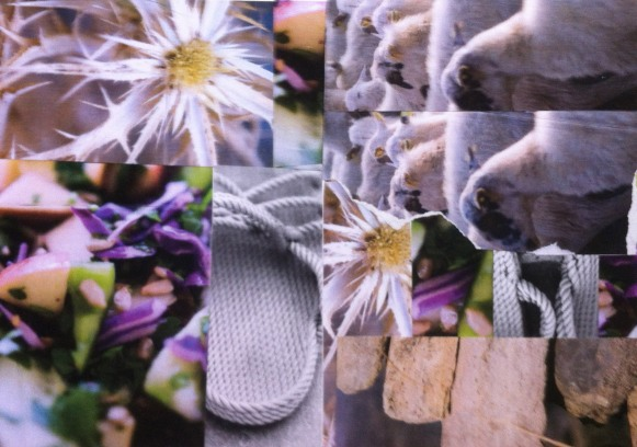 voorbeeld sfeer collage2
