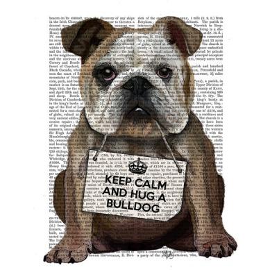 proef print bulldog